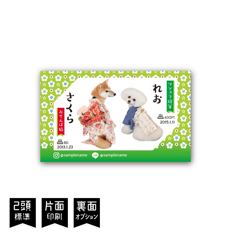 うちの子名刺 小梅LimeGreen/多頭飼いペット名刺/片面/50枚