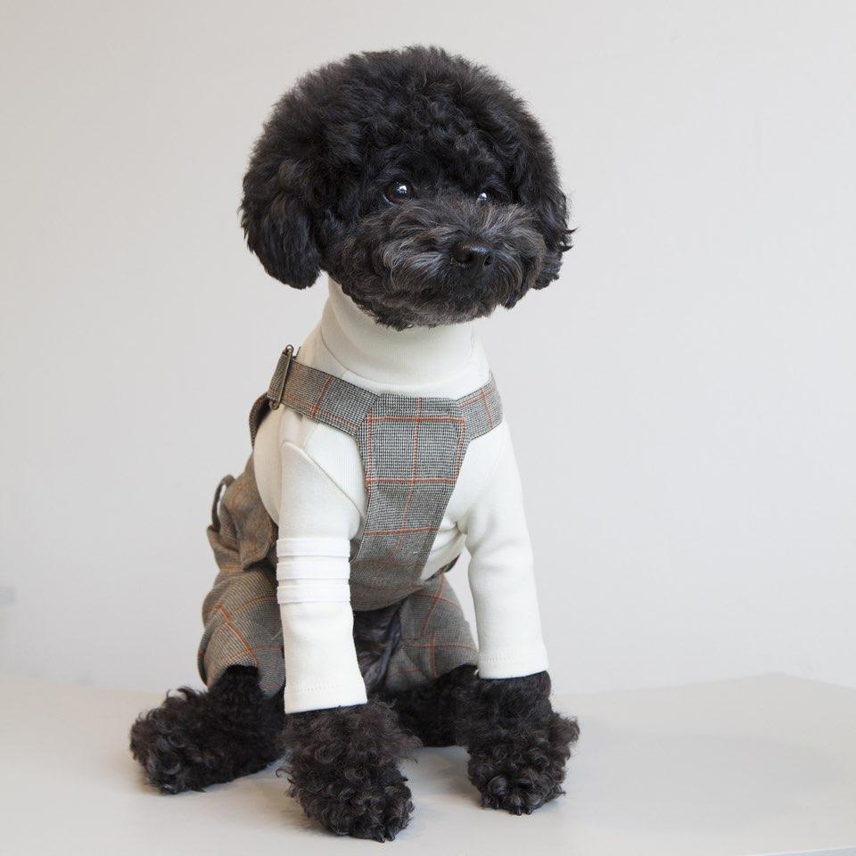 チェックオーバーオール 2色 【犬用 オーバーオール パンツ】