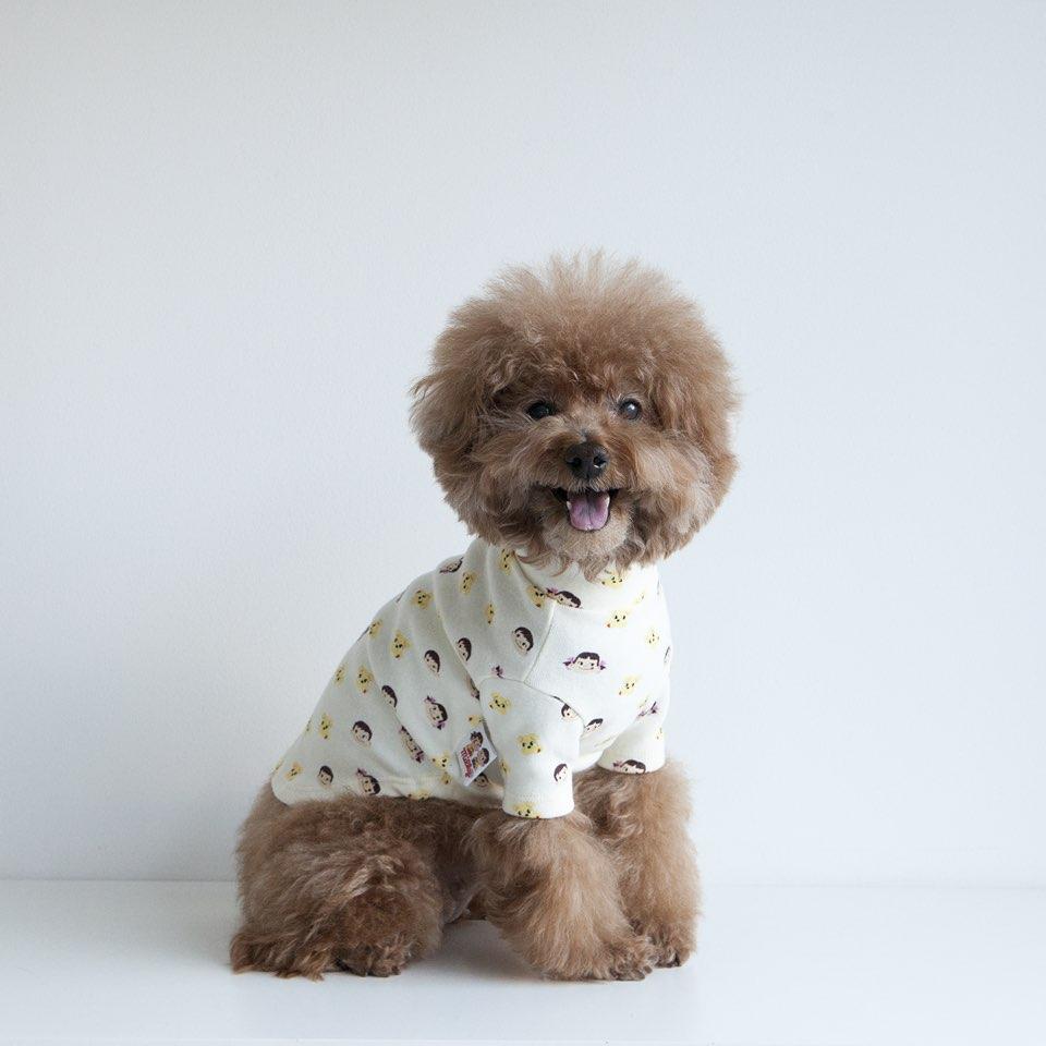ペコポコドッグ タートルネックTシャツ 【犬用 Tシャツ】