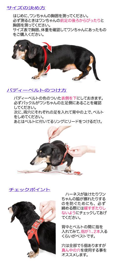 バディベルト 6号 ラグジュアリー シボタイプ スワロフスキー 3色 【犬用ハーネス】