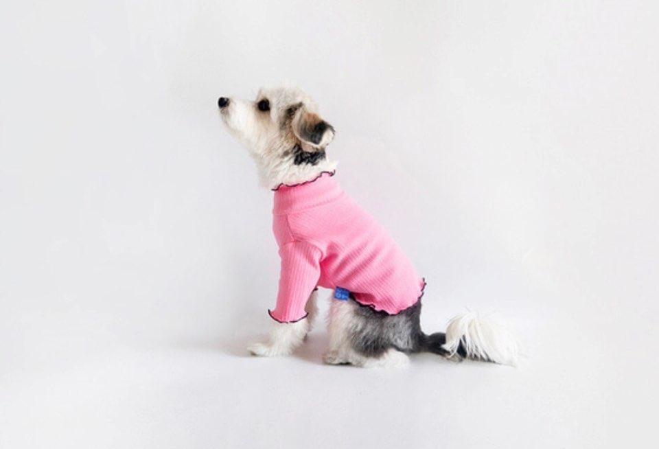 レタス クロップ Tシャツ 4色 【犬用Tシャツ】