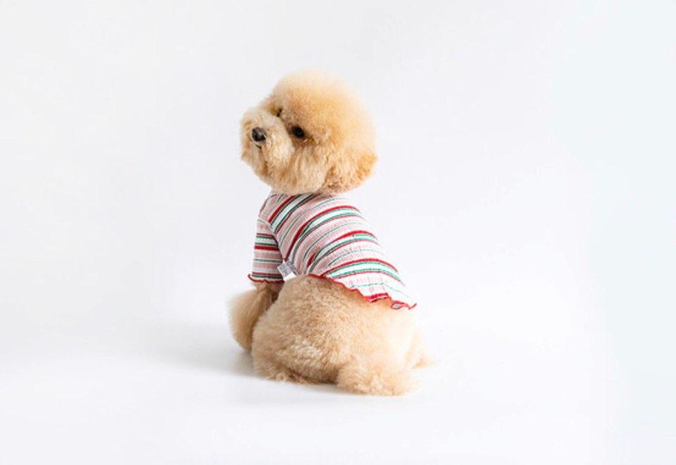 クリンクル レタス トップス 2色 【犬用 トップス】