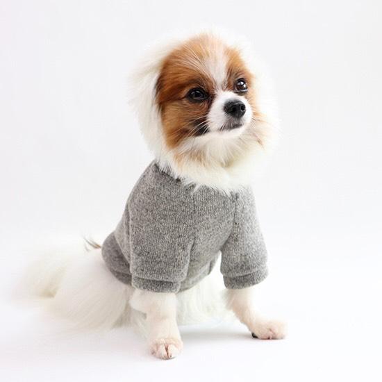 ファー フーディー コート 【犬用 アウター】