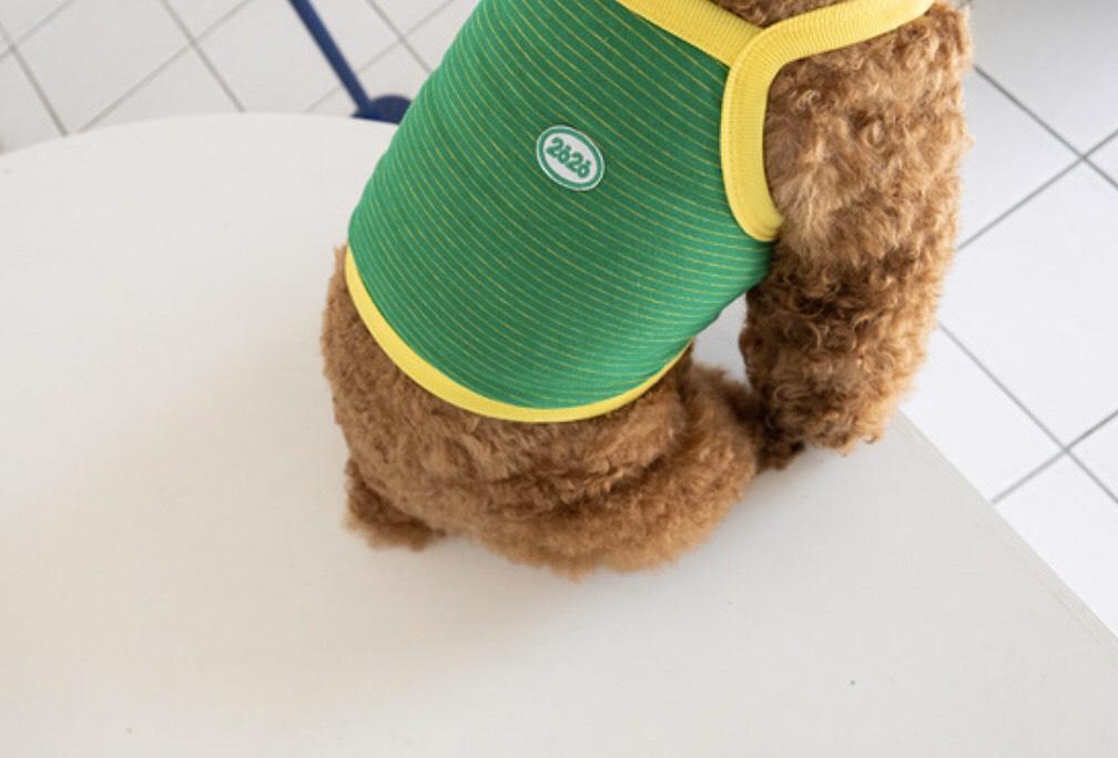 ストライプ クロップド トップス 2020 4色 【犬用トップス】