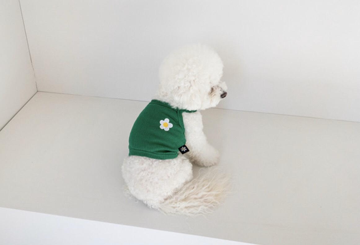 デイジー クロップド トップス 5色 【犬用キャミソール】