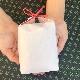 アレンジ用 お米のノベルティ品(紙袋/約3合・450g)