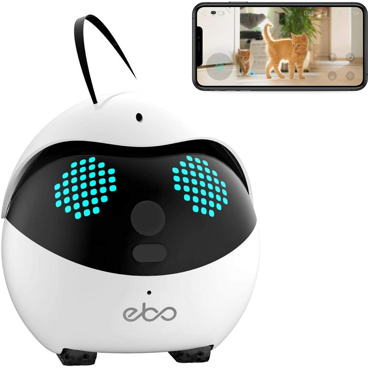 猫用 ロボット Ebo イーボ 標準版 自走式 見守りカメラ 猫用品 ペットカメラ 猫おもちゃ ペットモニター