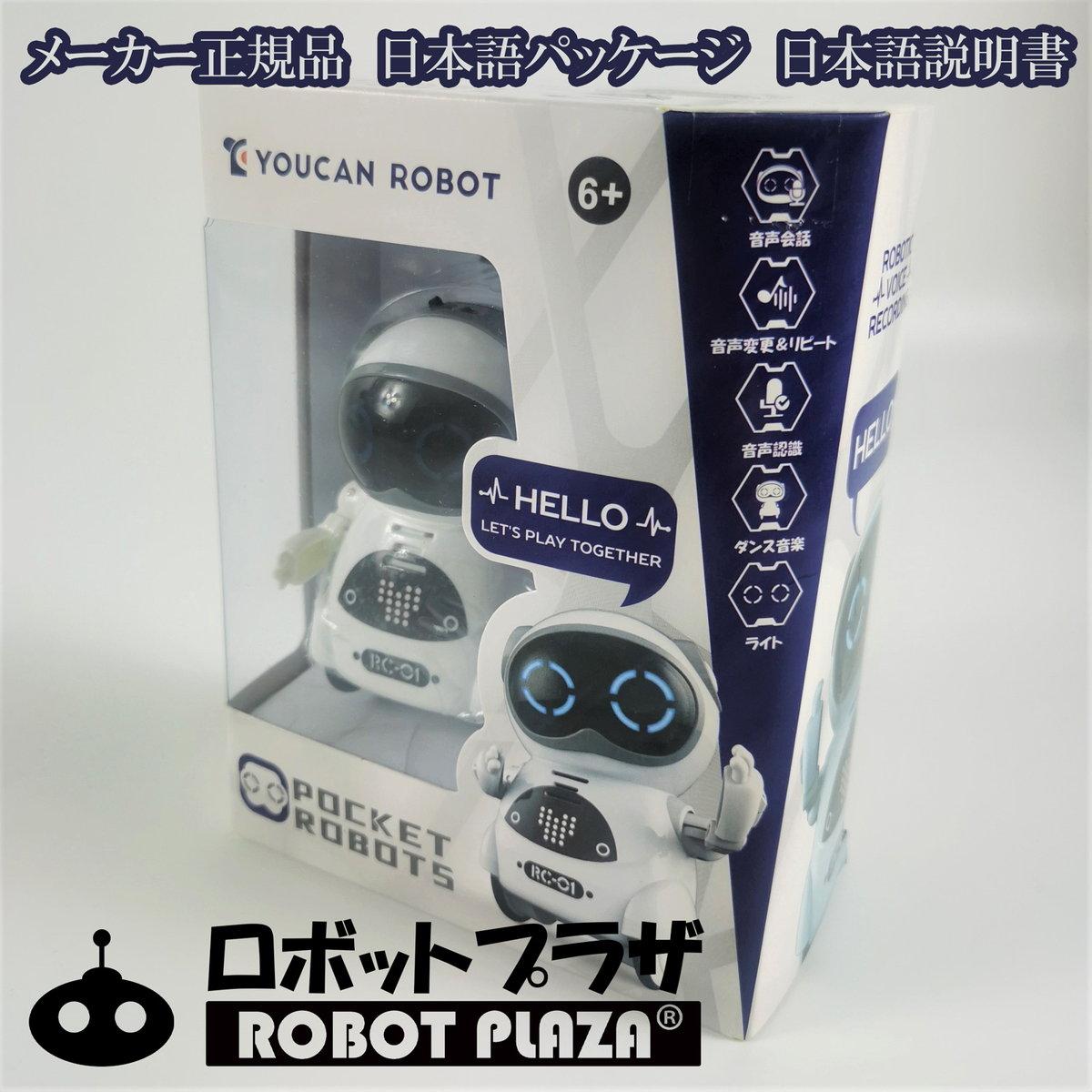 しゃべる おもちゃ コミュニケーション ロボット 英語 勉強 知育 教育 音声認識 音声会話