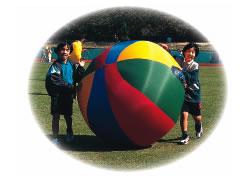 パラシュット プッシュボール PRF-206