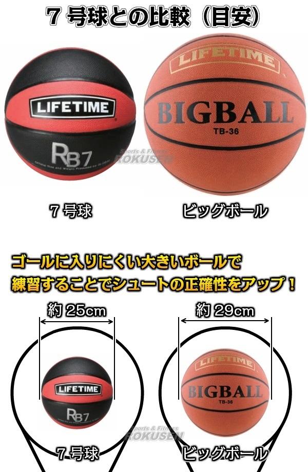 GLOBAL バスケットボールシュート練習用ボール ビッグボール TB-36(TB36) LIFETIME