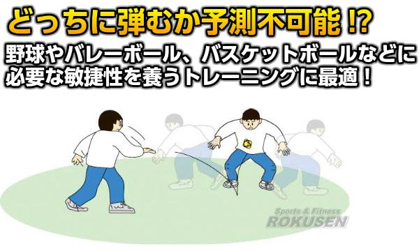 TOEI LIGHT・トーエイライト イレギュラーボール B-7997Y(B7997Y) スポーツ遊具 ジスタス XYSTUS
