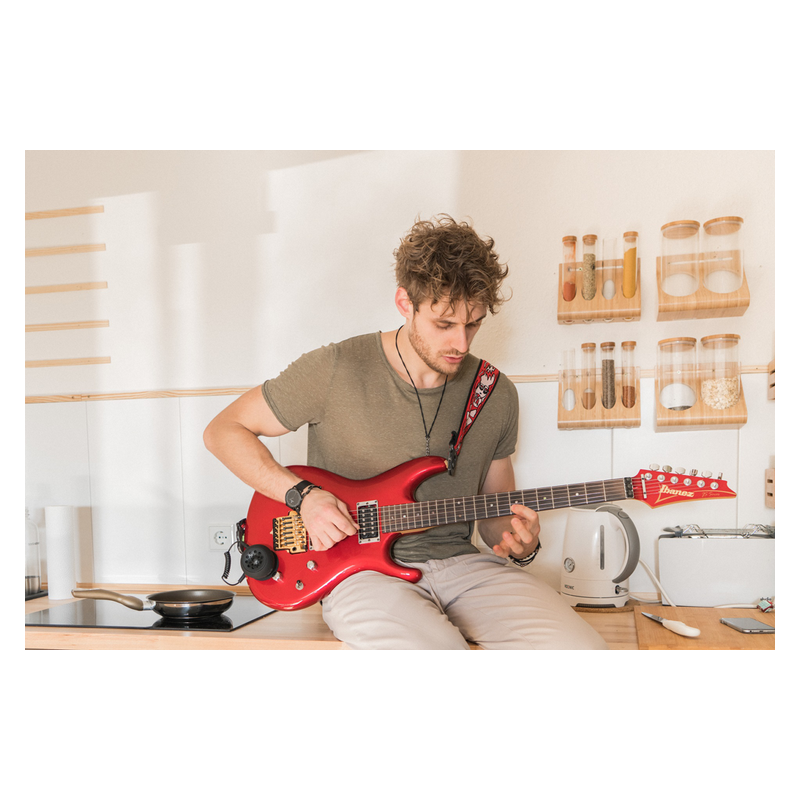 Fluid Audio Strum Buddy(SB)