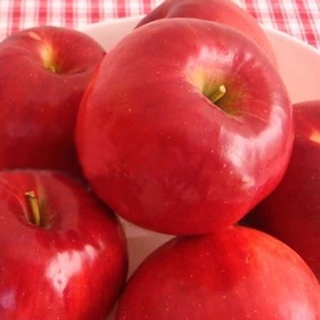 ハニーメイド 紅玉りんごジャム