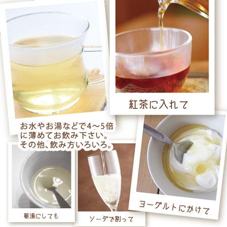 【2本で送料無料】花梨エキス蜂蜜