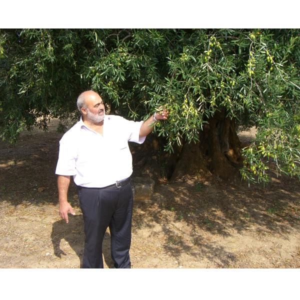 有機栽培エクストラバージンオリーブオイル アルティジャーノ2本セット