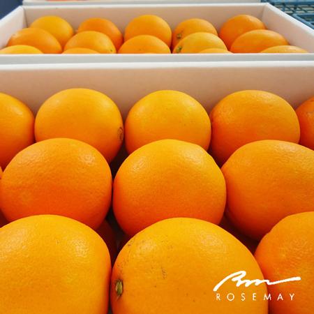 【7個で送料無料!】オレンジスライスジャム®