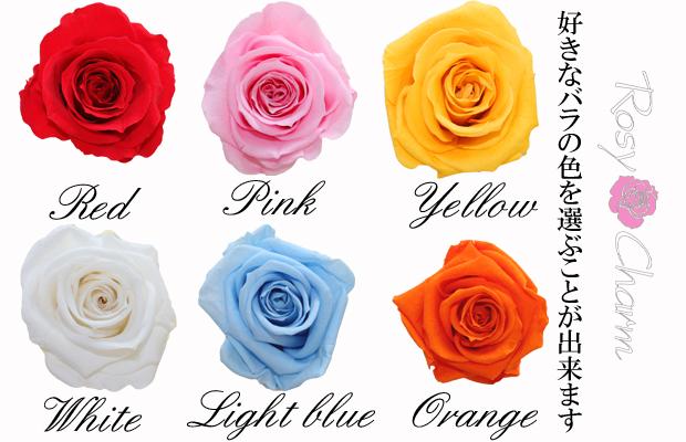 キューブローズ・ミニ (バラの花びらにメッセージ) プリザ2個セット
