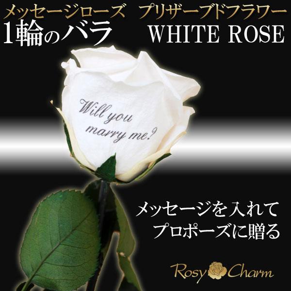 メッセージローズ プリザーブドフラワー(白いバラ)