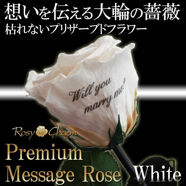 【プレミアム】メッセージローズ プリザーブドフラワー 大輪の白いバラ1本