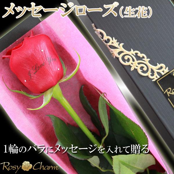 メッセージローズ【生花】薔薇1本箱入り