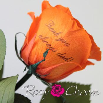 メッセージローズ プリザーブドフラワー(オレンジのバラ)