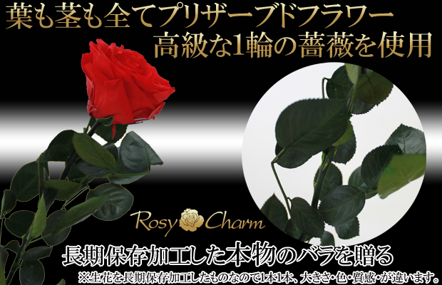 プリザーブドフラワーのバラの花束 【青いバラの花束】