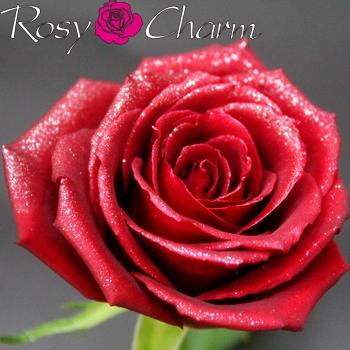ラメ付き 赤いバラの花束|スパークリングローズ・ブーケ