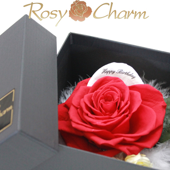 BOXローズ 赤いバラ&ホワイトペタル メッセージフラワーギフト