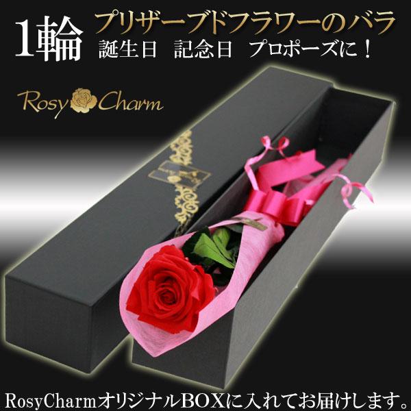 プリザーブドフラワー 1輪のバラ|誕生日・記念日・プロポーズに贈るバラ