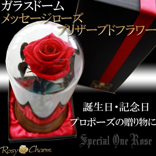 ガラスドーム メッセージローズプリザーブドフラワー【プロポーズ・誕生日・記念日に贈るバラ】