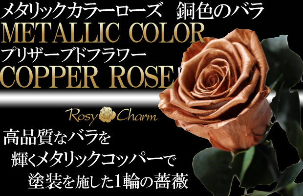 銅色のバラ プリザーブドフラワー【コッパーローズ】