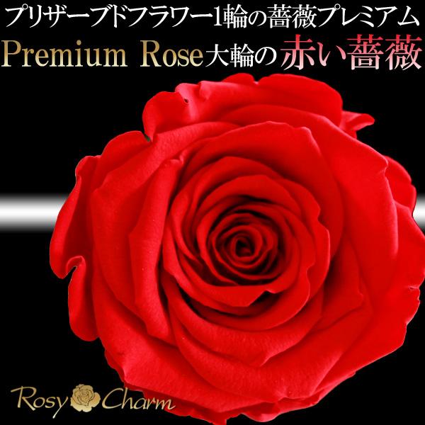 赤い薔薇 プレミアムローズ1本プリザーブドフラワー