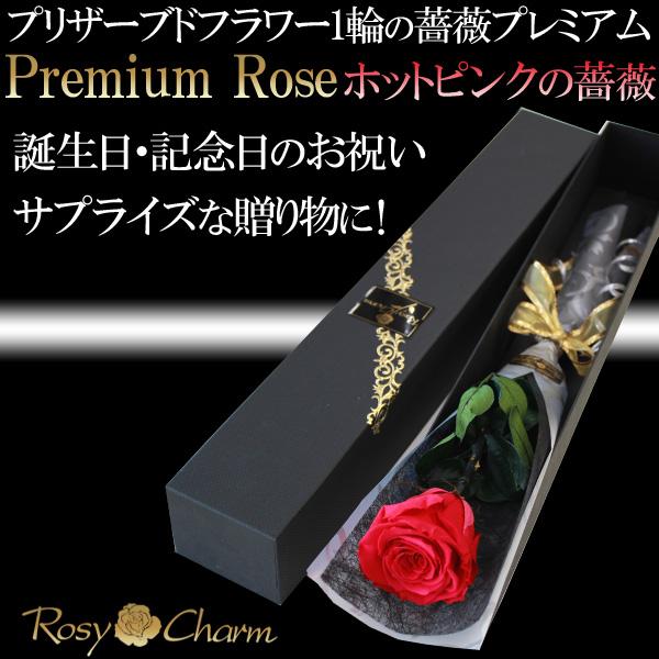 ホットピンクの薔薇 プレミアムローズ1本 プリザーブドフラワー