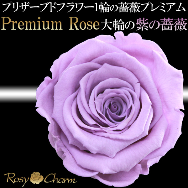 紫の薔薇 プレミアムローズ 1本 プリザーブドフラワー