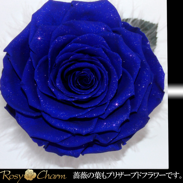 大輪 青い薔薇|フォトフレーム ダイヤモンドローズ プリザーブドフラワー【写真立て】