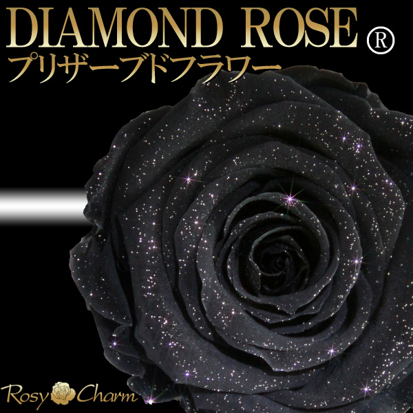 ダイヤモンドローズ プリザーブドフラワー 黒色の薔薇 1本 【ブラックローズ】