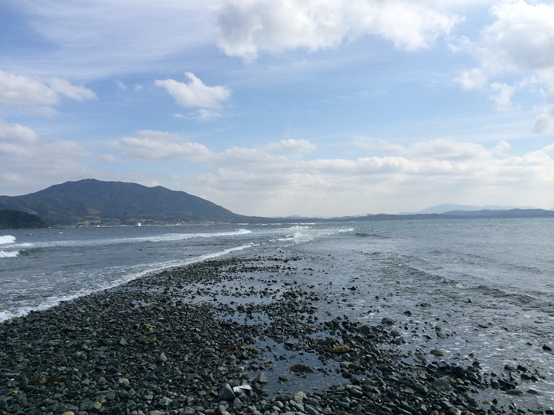 【10%OFF】 宗像・大島産天然カットわかめ業務用×2袋