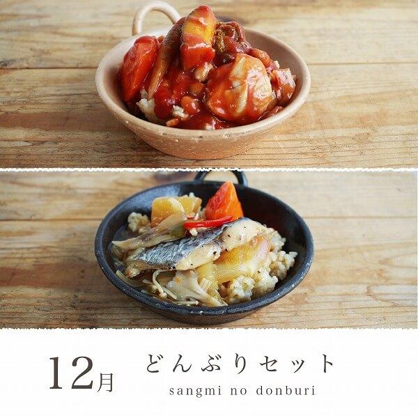 【定期便☆月1回お届け】実身美の月替わり玄米どんぶりセット