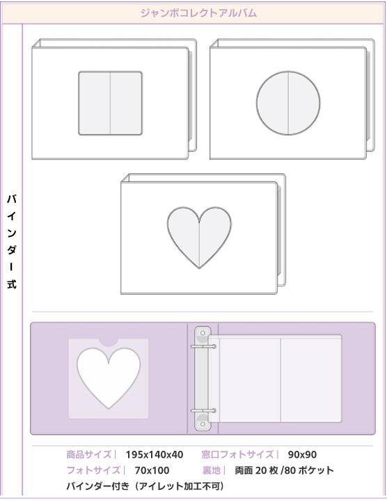 バインダー式コレクトアルバム(窓付き、全面印刷、ハードカバー、トレカ最大80枚収納)