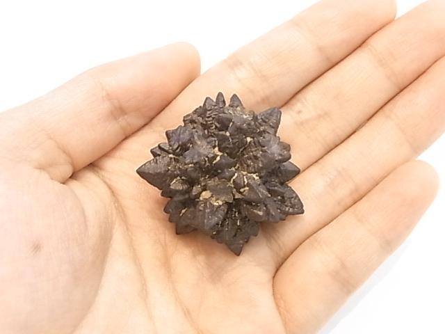 GA00011F エジプト リビア産 ゼットストーン(リモナイト)原石