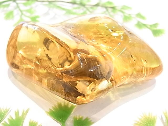 CA00010F リトアニア産 アンバー(琥珀)虫入りポリッシュ