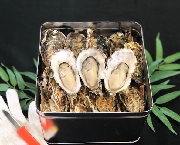 【期間限定】奥松島産牡蠣のカンカン焼き+特選バーベキューのセット(4人前)
