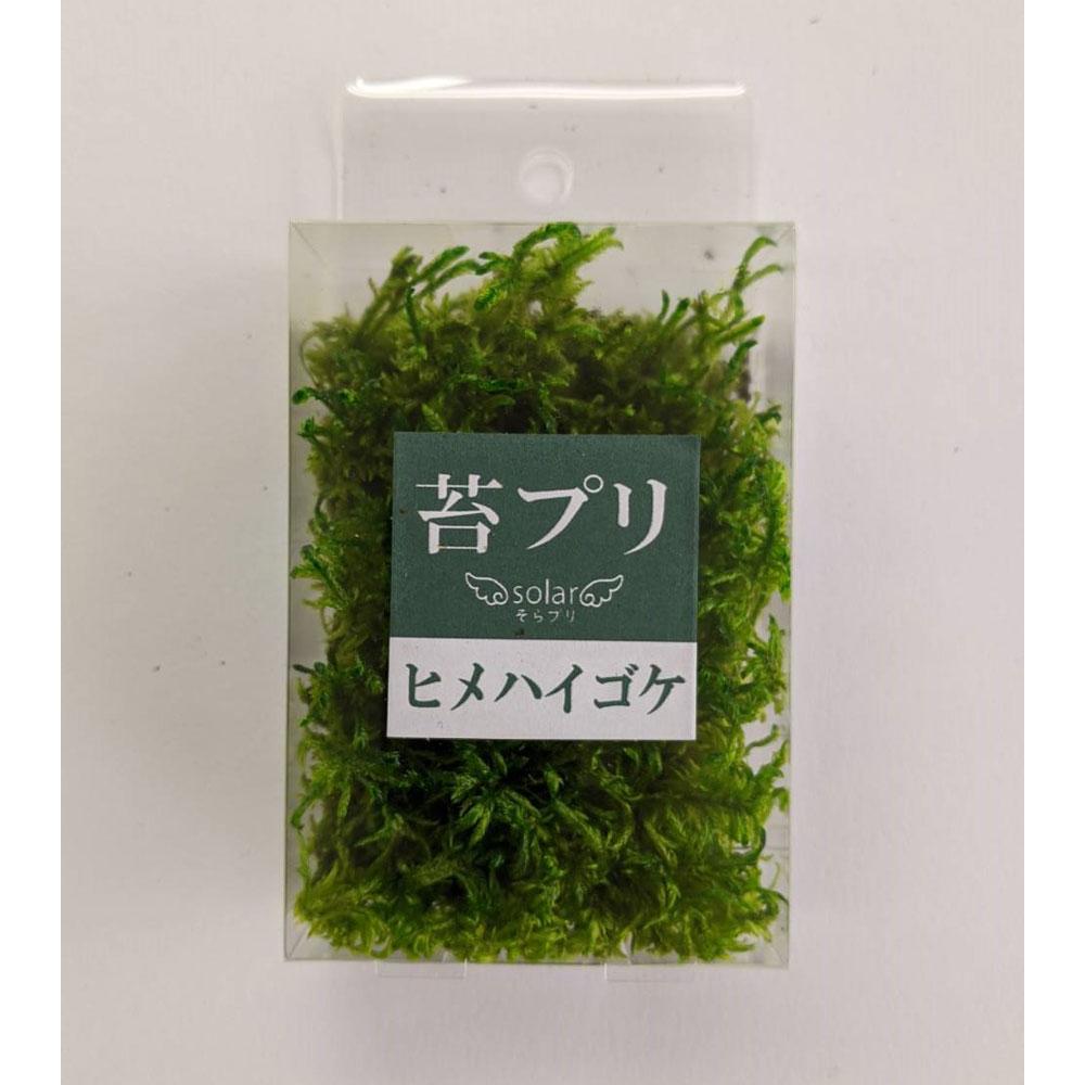 苔プリ (ヒメ)ハイゴケ S :そらーる ノンスケール kp020