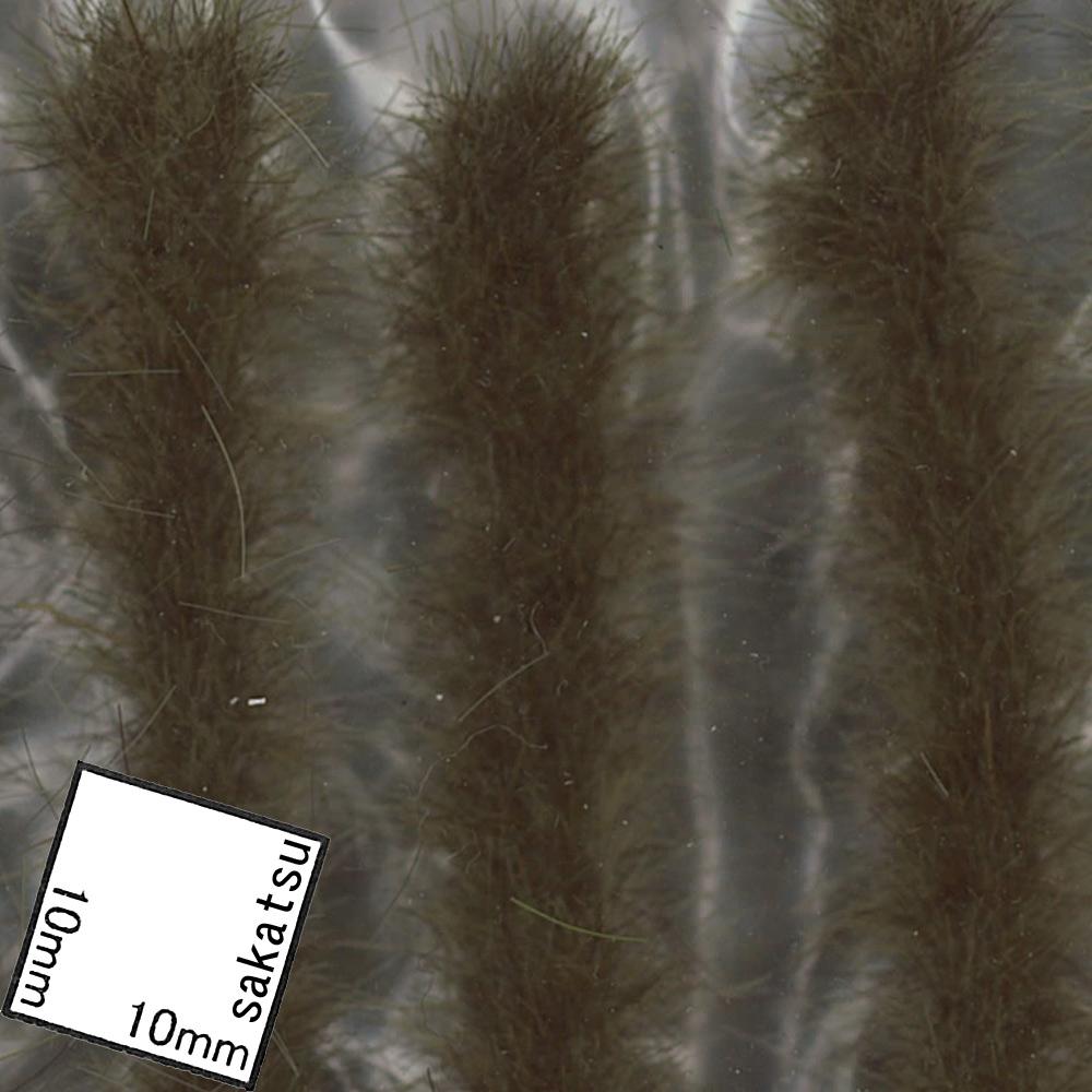 秋の明るい草の帯 :ジョーフィクス 素材 ノンスケール 146