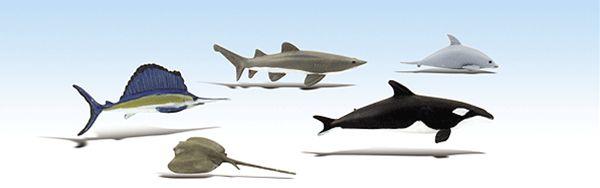 海洋生物(イルカ、サメ、シャチ、エイ、カジキ) :ウッドランド 塗装済完成品 ノンスケール SP4447