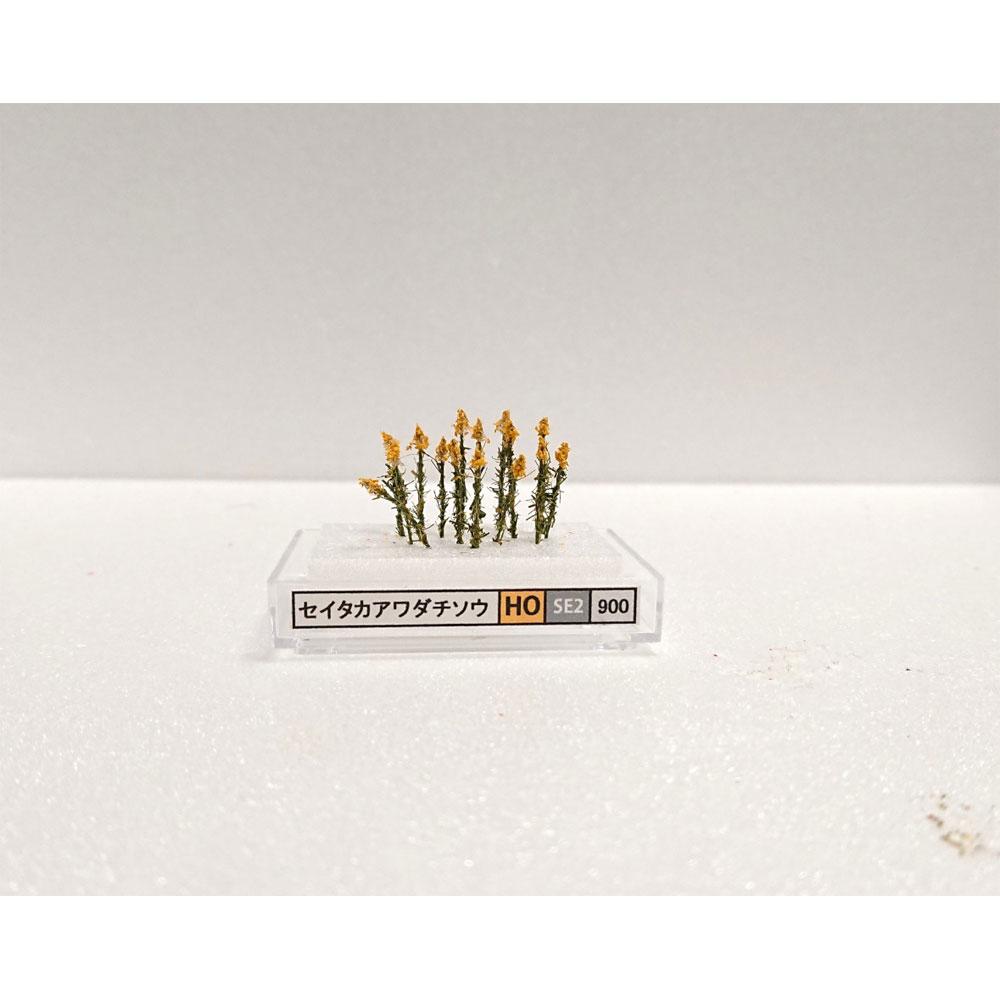 【模型】 セイタカアワダチソウ(HO) 約1.5〜2cm :木草BUNKO HO(1/80) SE2