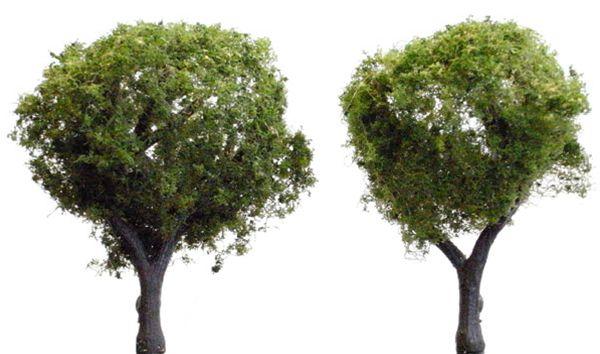 広葉樹 3.7〜5cm 5本 :ウッドランド 完成品 ノンスケール 3502