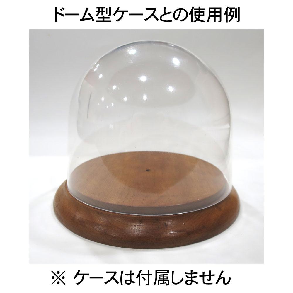木製円形展示台 タミヤドーム型ケース対応 :さかつう ディスプレイベース 8807