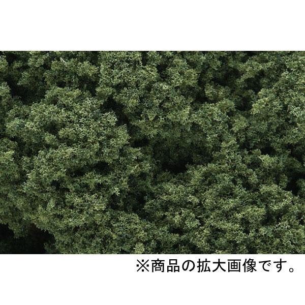 スポンジ系素材 【フォーリッジクラスター】 ミディアム・グリーン(緑) :ウッドランド 素材 ノンスケール FC58