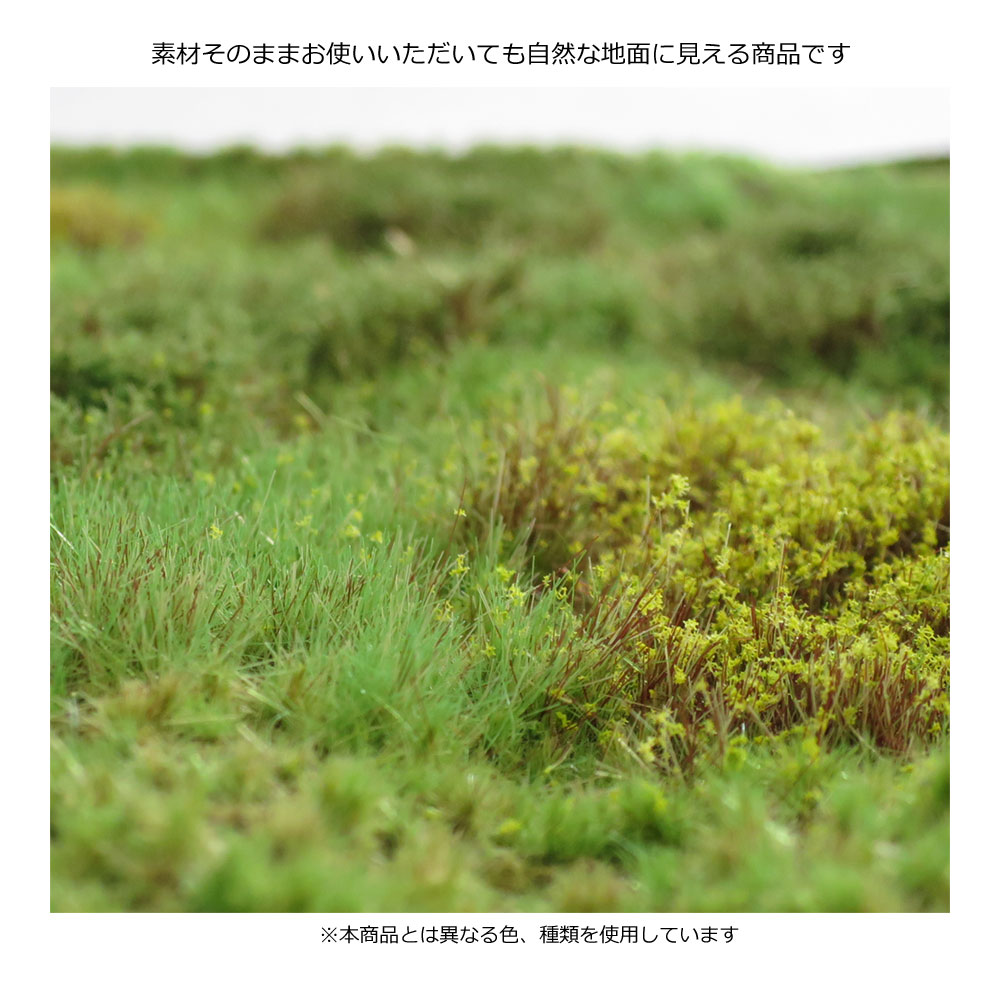 マットタイプ(草原) 全高12mm 初秋 パウダー付き :マルティン・ウエルベルク ノンスケール WB-M054